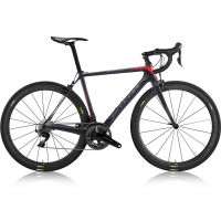 《custom-bike》dedacciai-gladiatore-ii-carbon-road-bike